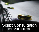 When you submit your script to an agent or production company, you've got one shot. It's got to be perfect...